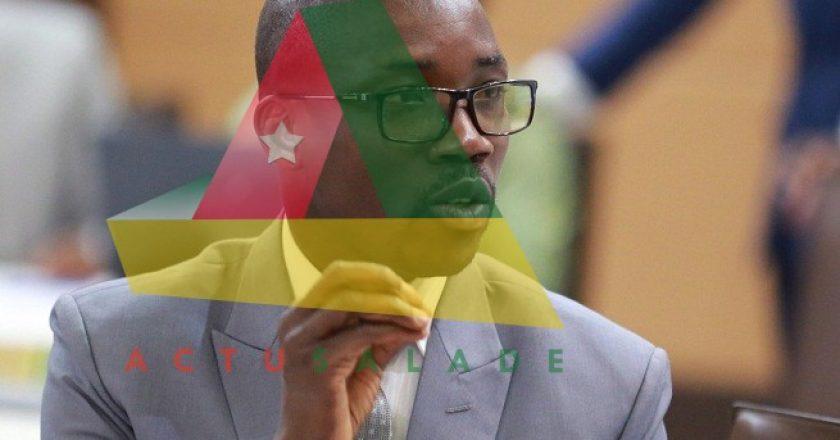 Le ministre Bataka et l'élevage au Togo