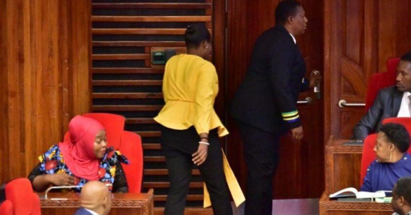 Le Président D'un Parlement Renvoi une Députée Pour Avoir Porté Un Pantalon Jugé « Trop Serré »