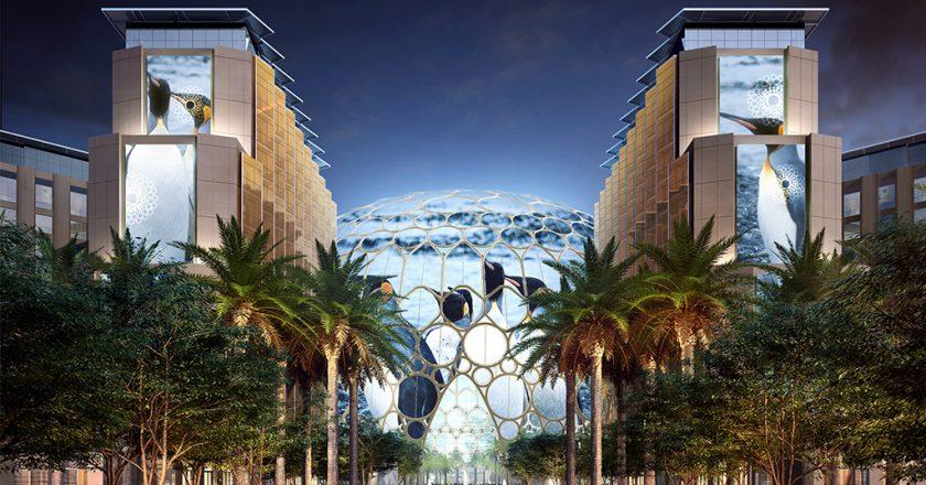 Expo 2020 Dubaï : table ronde autour de la perte de biodiversité et du changement climatique